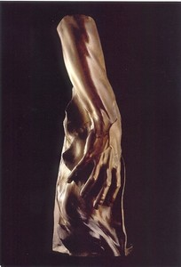 Title: Adam's Arm , Medium: bronze sculpture