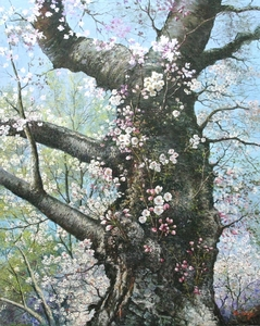Title: Cherry Tree Blossoms , Size: 30x24 , Medium: oil painting on canvas